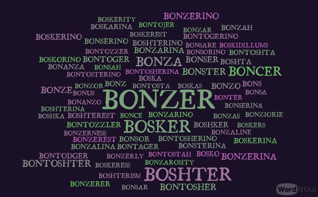 bonzer-word-cloud-4341314
